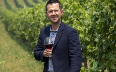 Ricky Ponting's wines: are they any good?
