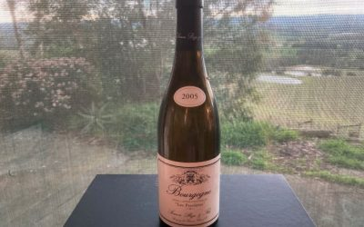 2005 Simon Bize & Fils Bourgogne Les Perrières